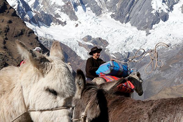 O arrieiro Massimo Miranda prepara seus burros (TODAS AS FOTOS: Bruno Romano)