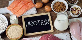 Quantidade de proteína por dia