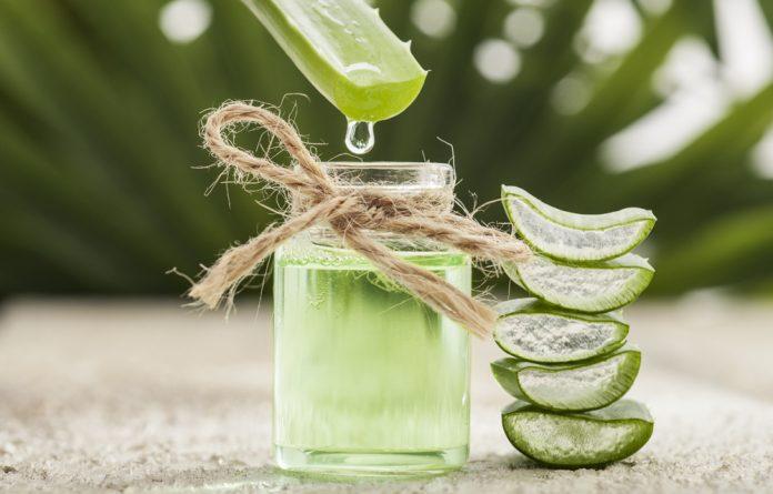 Tomar suco de babosa realmente ajuda você a perder peso?