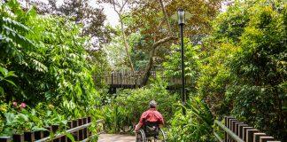 Conecte-se à natureza com um jardim sensorial | Go Outside