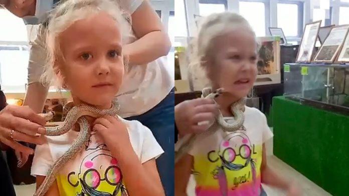 Criança leva picada de cobra ao posar para foto em zoológico