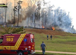 Avião cai em Piracicaba e 7 pessoas morrem carbonizadas