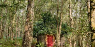 Casa do Ursinho Pooh ganha vida em Airbnb