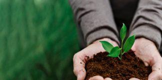 Bilionários se unem em ação que levanta dinheiro suficiente para preservar natureza ate 2030