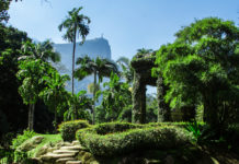 Jardim Botânico do Rio de Janeiro terá visitas noturnas