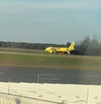 Avião pega fogo após pássaro voar dentro da turbina