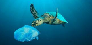 plástico Mediterrâneo